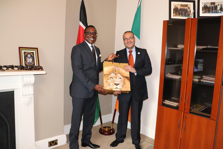 Kenya Embassy Ireland